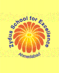 Zydus School For Excellence - Vejalpur