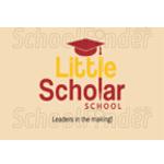 Little Scholar School