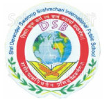 DSB International Public School