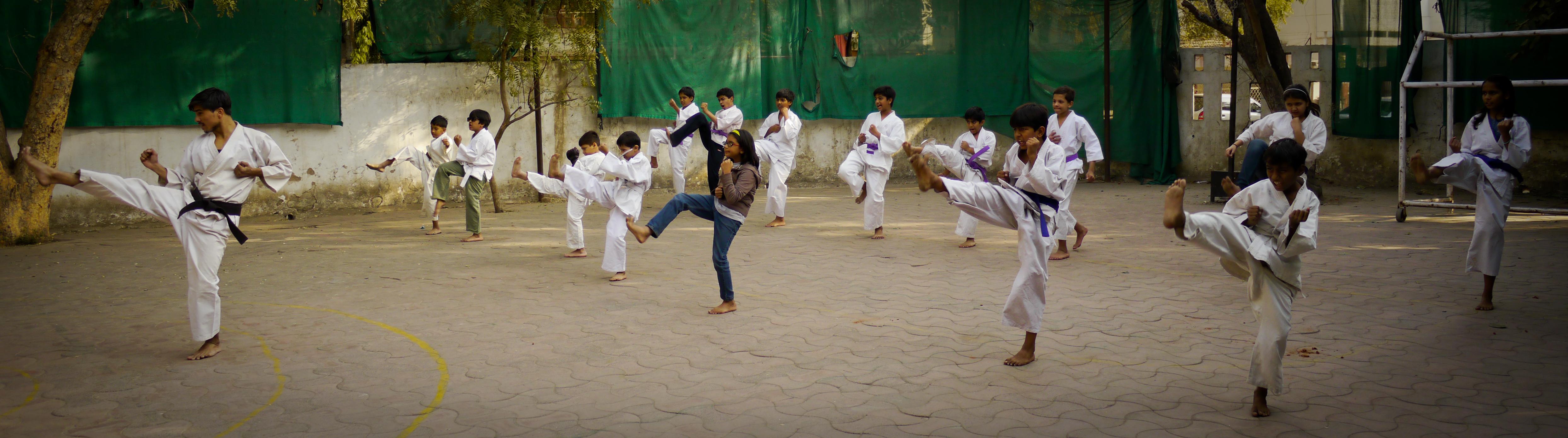karate-14-bandeau-1020708.jpg