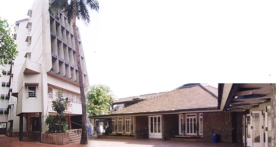 schoolpic2.jpg