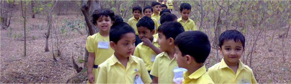 gurukul_pre_primary.jpg