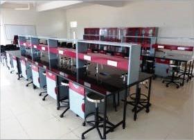 lab-3.jpg